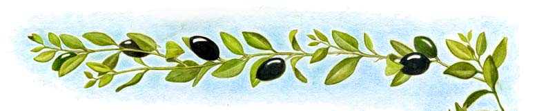 Ruth-top-right-Olives-border