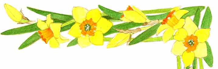 Flower-border-top